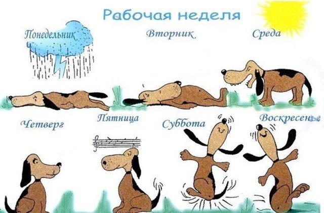 vovet.ru сайтри сӑн
